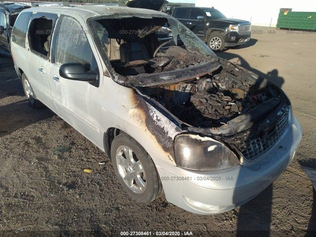 2FMDA58246BA50095-2006-ford-freestar