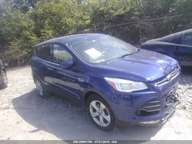 1FMCU0GX6EUB40327-2014-ford-escape