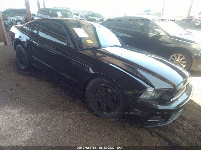 1ZVBP8AM4D5224298-2013-ford-mustang