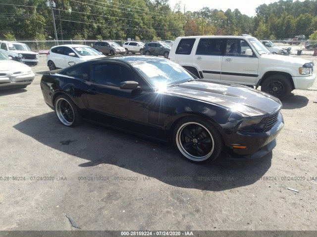 1ZVBP8AN0A5136112-2010-ford-mustang